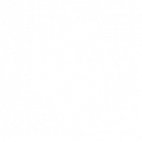 Preserved Flowers Icon